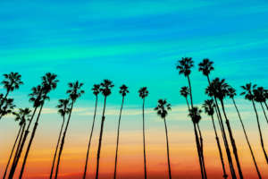 Holistic Rehab Centers California