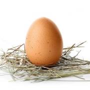 mental health egg on instagram