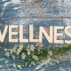 Mental Wellness Facility